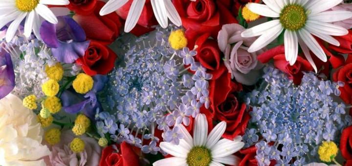 Цветница (Връбница)